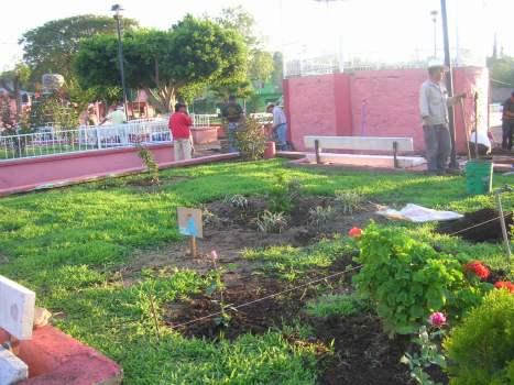 Conservando el jardín