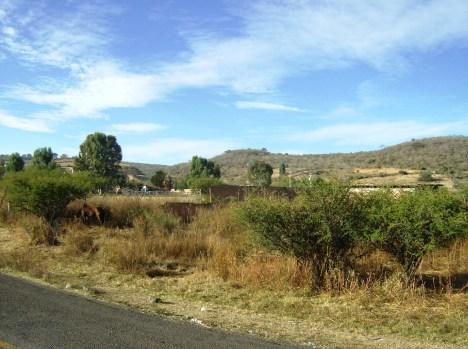 Paraje del LLano, con mirada hacia Buenavista
