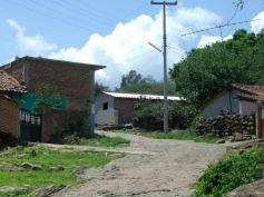 El Guayabo 10