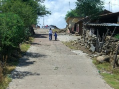 El Guayabo 14