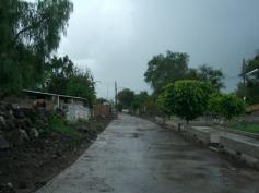 El Tecuan 5