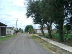 Rodeo Viejo 1