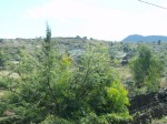 El Cerro del Metate visto desde el Cerrito de la Santa Cruz. Foto de Silviano