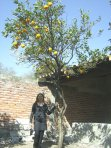 Marisela Martínez Campos en su huerto, 2