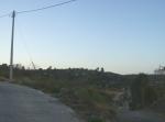Ziquítaro, calles y paisajes, 16. Mañanita del día 12, hacia El Guayabo