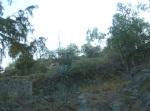 Ziquítaro, calles y paisajes, 44. Mañanita del día 12, tras de Lojodiagua, emñieza el callejón del antes llamado barrio de La Bolsa