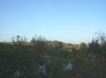 Ziquítaro, calles y paisajes, 49.Mañanita del día 12, desde la presita, hacia la loma