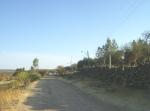 Ziquítaro, calles y paisajes, 73. Mañanita del día 12. Calzada hacia el panteón