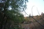 Ziquítaro, calles y paisajes, 84. Paraje en el barrio de El Chorro