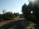 Ziquítaro. El parque y los alrededores, 26