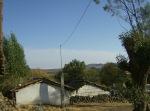 Ziquítaro. El parque y los alrededores, 43
