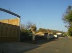 Ziquítaro. El parque y sus alrededores, 52