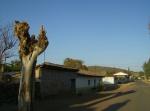 Ziquítaro. El parque y sus alrededores, 53