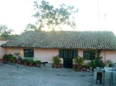 En Los Guanumos.