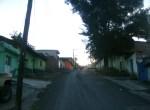 Calzada. La calle central de Los Nopales Altos